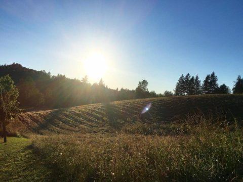 Spotlight on Kerslake Farms